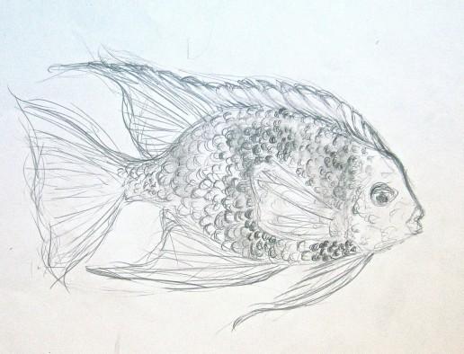 Zeichnung Zeichenkurs Kunstkurs im Zoo Leipzig